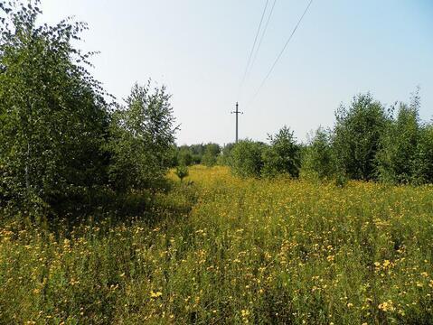 наиболее популярных фото деревни пашково тульской обл жесткий диск