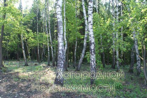 Продается участок. , Милюково д,, Купить земельный участок в Москве, ID объекта - 202322823 - Фото 15