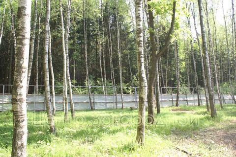 Продается участок. , Милюково д,, Купить земельный участок в Москве, ID объекта - 202322823 - Фото 1
