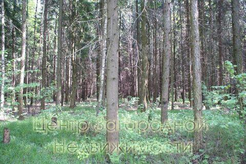 Продается участок. , Милюково д,, Купить земельный участок в Москве, ID объекта - 202322823 - Фото 2