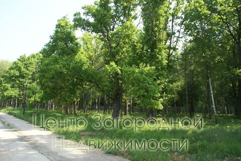 Продается участок. , Милюково д,, Купить земельный участок в Москве, ID объекта - 202322823 - Фото 7