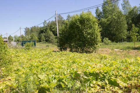 Продажа участка, Бавыкино, Наро-Фоминский район