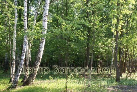 Продается участок. , Милюково д,, Купить земельный участок в Москве, ID объекта - 202322823 - Фото 16