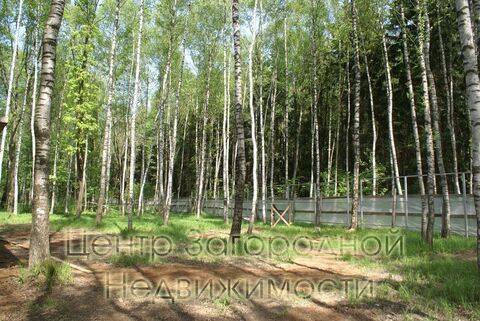 Продается участок. , Милюково д,, Купить земельный участок в Москве, ID объекта - 202322823 - Фото 6