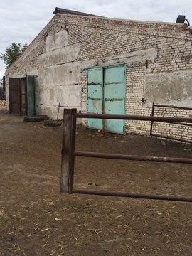 8 000 000 Руб., Продается ферма в Белгородской области, Продажа готового бизнеса Шишино, Белгородский район, ID объекта - 100058704 - Фото 7