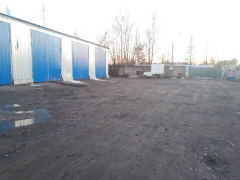 Аренда склада 820 м2, Аренда склада в Санкт-Петербурге, ID объекта - 900745248 - Фото 4