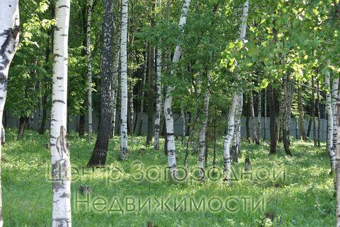 Продается участок. , Милюково д,, Купить земельный участок в Москве, ID объекта - 202322823 - Фото 11