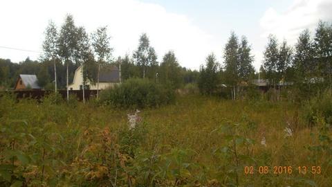 Лучший участок в СНТ продается, Купить земельный участок в Солнечногорском районе, ID объекта - 201335526 - Фото 1