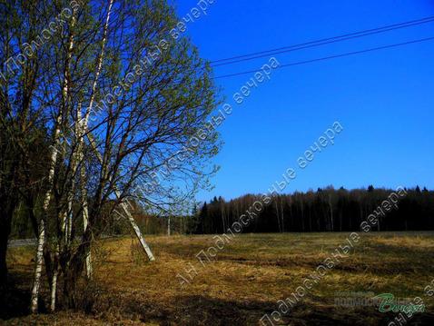 Киевское ш. 50 км от МКАД, Белоусово, Участок 500 сот.