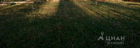 происходит фото игумново тульская область яйца
