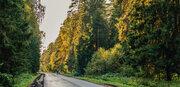 Дача на берегу Пироговского водохранилища!, Купить дом Чиверево, Мытищинский район, ID объекта - 503016946 - Фото 23