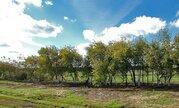 Купить земельный участок в Голохвастово