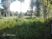 Купить земельный участок в Курьяново