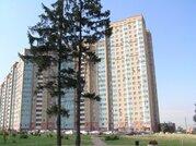 Продается Двухкомн. кв. г.Москва, Новокуркинское шоссе, 51, Купить квартиру в Москве, ID объекта - 314498539 - Фото 5