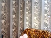 Продам 4к на пр. Молодежном, 7, Купить квартиру в Кемерово, ID объекта - 321022156 - Фото 33
