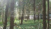 9 500 000 Руб., Лесной участок 15 сот., Купить земельный участок Борки, Истринский район, ID объекта - 202023443 - Фото 13