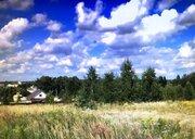 Продается земельный участок, Большое Петровское, 30 сот, Купить земельный участок Большое Петровское, Чеховский район, ID объекта - 202015525 - Фото 3