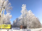 Продаётся участок с лесными деревьями рядом с горнолыжным парком, Купить земельный участок Благовещенское, Дмитровский район, ID объекта - 202330321 - Фото 6
