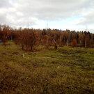 Участок в Новой Москве, Купить земельный участок в Москве, ID объекта - 202267485 - Фото 8