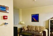 15 800 000 Руб., Элитная квартира у моря!, Купить квартиру в Сочи, ID объекта - 327063606 - Фото 3