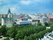 5-ти комн кв Цветной бульвар, д 2, Купить квартиру в Москве, ID объекта - 334042191 - Фото 19