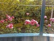 Сочи 80 метров до моря Комната отдыхающим, Снять комнату на сутки в Сочи, ID объекта - 700057490 - Фото 17
