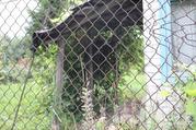 Участок 5 сот. (СНТ, ДНП), Купить земельный участок в Курском районе, ID объекта - 202690807 - Фото 2