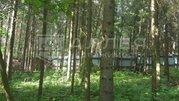9 500 000 Руб., Лесной участок 15 сот., Купить земельный участок Борки, Истринский район, ID объекта - 202023443 - Фото 5