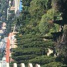 44 500 000 Руб., Роскошная квартира в Приморском парке, Купить квартиру в Ялте, ID объекта - 334598676 - Фото 35