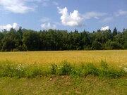 Участок в Новой Москве, Купить земельный участок в Москве, ID объекта - 202267485 - Фото 13