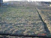 Купить земельный участок в Думино