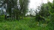 Купить земельный участок в Ильино