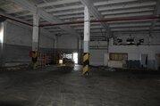 Складское помещение 2312 кв м на Вольском тракте, Аренда склада в Саратове, ID объекта - 900491737 - Фото 9
