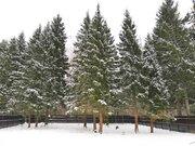 Продаётся участок с лесными деревьями рядом с горнолыжным парком, Купить земельный участок Благовещенское, Дмитровский район, ID объекта - 202330321 - Фото 3