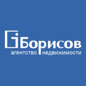 """Агентство недвижимости """"Борисов"""""""