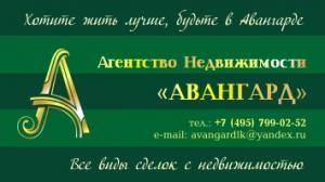 Агентство недвижимости Авангард
