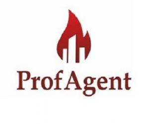ProfAgent
